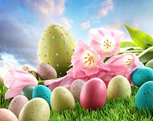 Los Angeles Bail Bond Store Easter